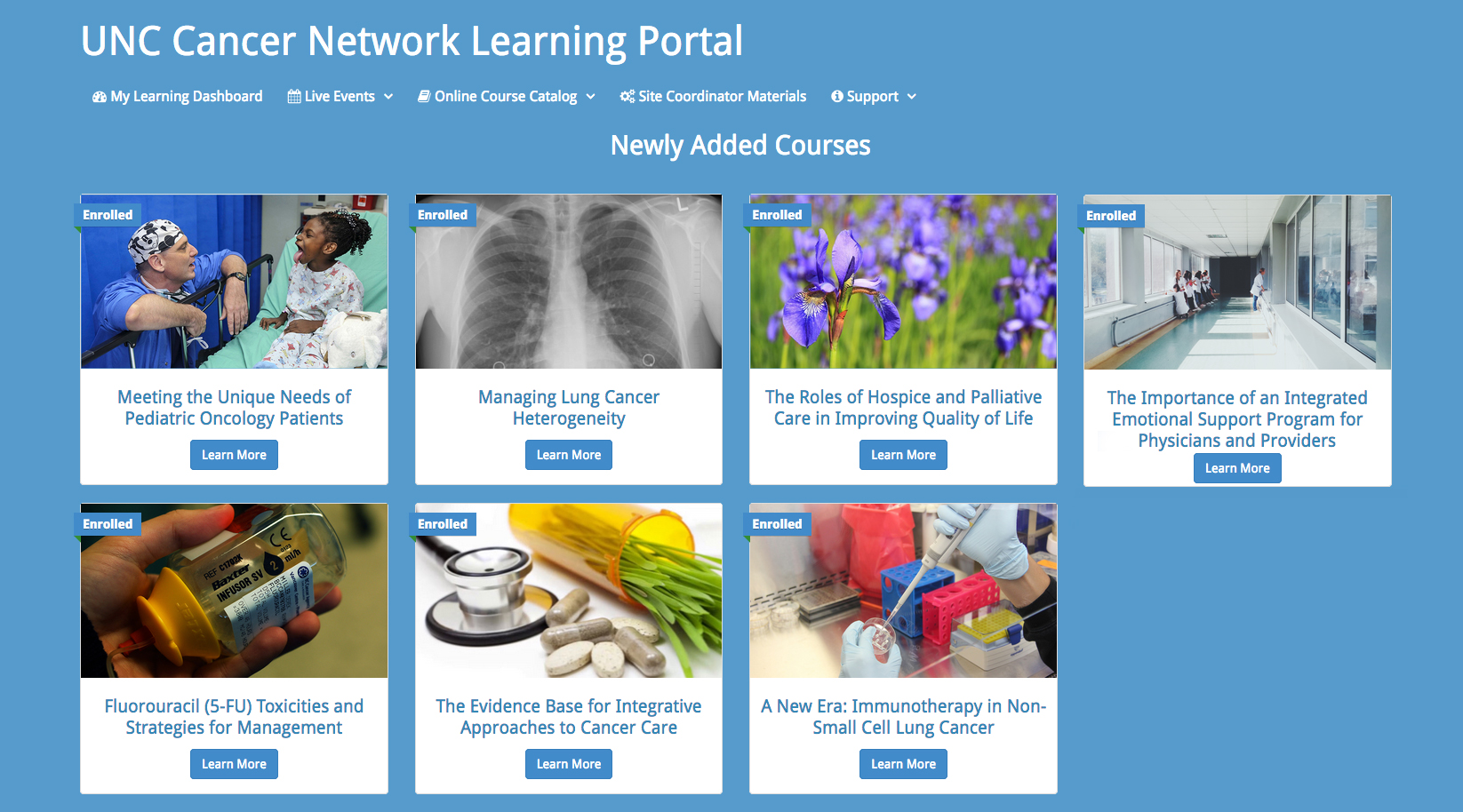 Courses in the Learning Portal