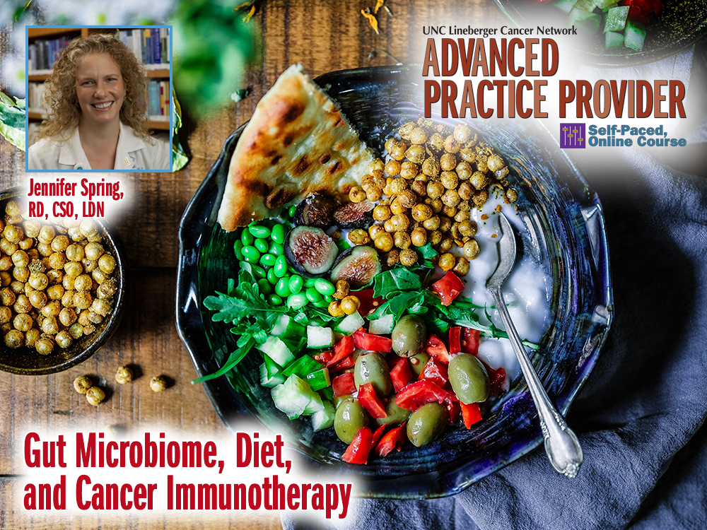 Gut Microbiome, Diet, and Cancer Immunotherapy