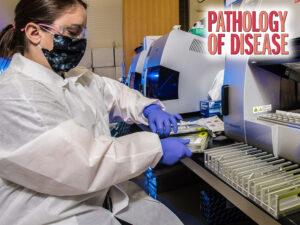 2021 Pathology of Disease Feature Image