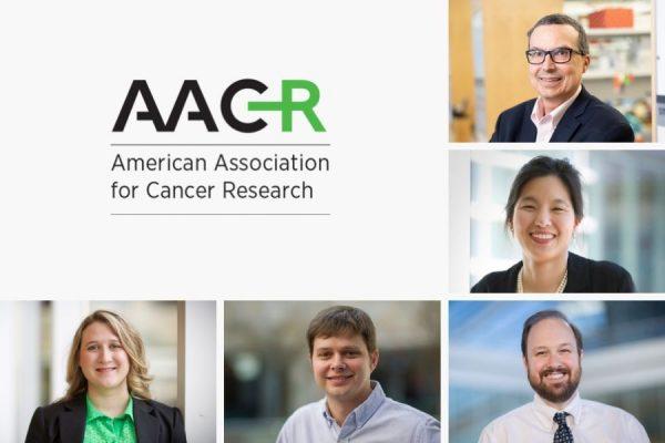 AACR award logo with headshots of Lineberger faculty award recipients
