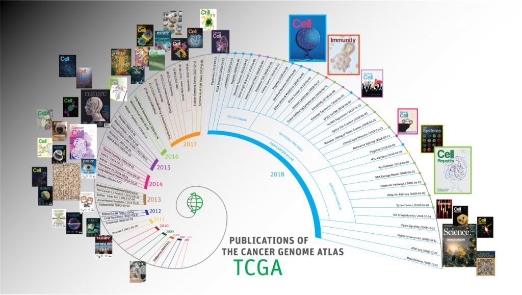 Timeline of publications from The Cancer Genome Atlas, with more than 28 papers published in 2018 alone.
