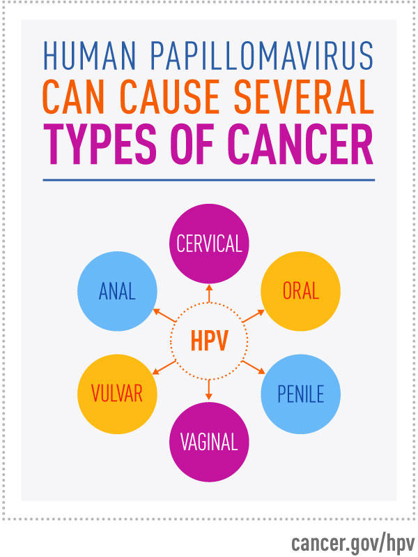 HPV can cause several types of cancer: cervical, anal, oral, penile, vaginal and vulvar.